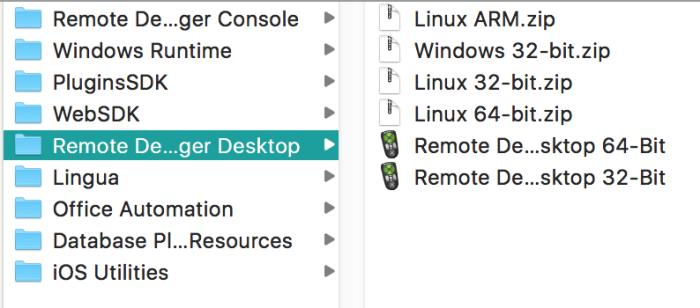 RemoteDebugger.png